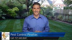 Pest Control Largo FL - Pest Control Pinellas Reviews Pest Control, Youtube, Youtubers, Youtube Movies