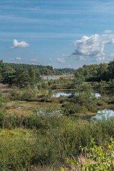Den Teut, Zonhoven, België, fotografie, photography, landscape, Belgium