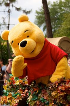 Winnie the Pooh at Disney Character Central