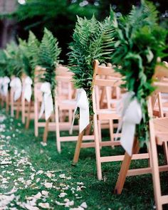 Lush ferns and satin ribbon bows adorned the chairs. The aisle was strewn with rose petals from http://countryroses.co.uk