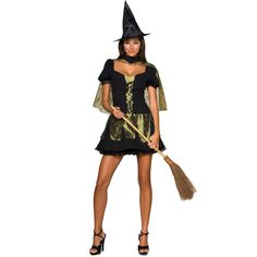 The Wizard of Oz Sexy Wicked Witch of the West Adult Costume | 31414 | 2013
