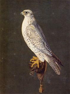 Bird by Giuseppe Arcimboldo