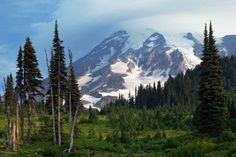 11 images that prove Mount Rainier National Park underrated