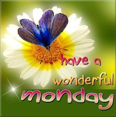 Have A Wonderful Monday monday monday quotes monday pictures monday images monday quotes and sayings Monday Morning Quotes, Happy Monday Quotes, Friday Morning, Night Quotes, Monday Images, Monday Pictures, Good Morning Good Night, Good Morning Wishes, Morning Pics