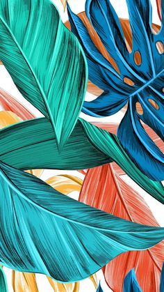 'Tropical Leaves' Case/Skin for Samsung Galaxy by CreativeCollie Tropical Art, Tropical Flowers, Tropical Leaves, Tropical Prints, Tropical Design, Illustration Agency, Tropical Wallpaper, Orange Wallpaper, Iphone Background Wallpaper