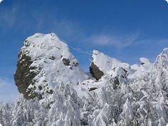 Viaggio alla scoperta del Parco dell'Aveto probabilmente ilpiù bello della Liguria. Mount Everest, Mount Rushmore, Mountains, Nature, Travel, Naturaleza, Viajes, Destinations, Traveling