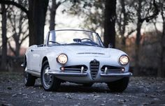 1963 Alfa Romeo Giulia Spider for sale: photos, technical specifications, description