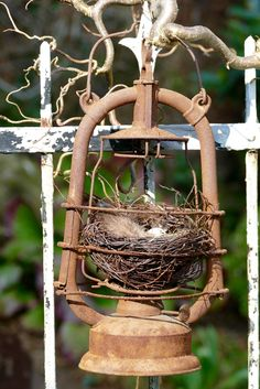 Petroleumlaterne mit Nest