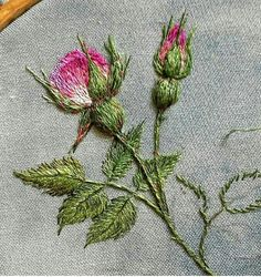 silk ribbon embroidery designs and techniques Hand Embroidery Flowers, Flower Embroidery Designs, Hand Embroidery Stitches, Silk Ribbon Embroidery, Embroidery Techniques, Embroidery Art, Cross Stitch Embroidery, Embroidery Patterns, Embroidery Fashion