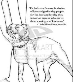 Truer words were never spoken! Pitbulls are amazing when it comes to their owners. Unconditional love and loyalty!