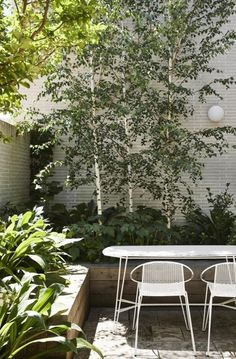 Side Garden, Terrace Garden, Courtyard Gardens, Small Gardens, Outdoor Gardens, Townhouse Garden, Outdoor Living Rooms, Home Landscaping, Garden Landscape Design