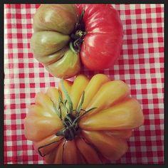 Gorgeous heirloom #tomatoes are back! #Manhattan's Tucker Square #farmersmarketnyc