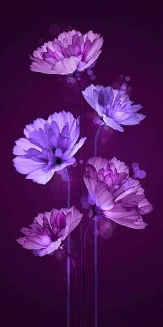 i Purple it : Purple Flowers aesthetic violet Flower Background Wallpaper, Purple Wallpaper, Butterfly Wallpaper, Purple Flower Background, Trendy Wallpaper, Background Patterns, Tumblr Backgrounds, Flower Backgrounds, Art Floral