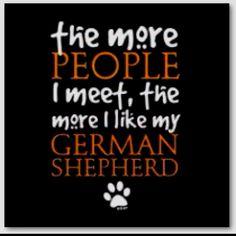 I like my German Shepherd