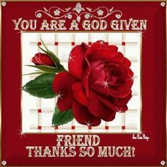 You Are A God Given Friend, Thanks So Much friendship friend friendship quotes friend quotes quotes on friends Friend Friendship, Friendship Quotes, Sister Quotes, Friend Quotes, Quotes Quotes, Thank You Greetings, My Precious, Thank You Notes, True Friends