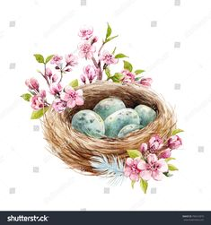Easter spring watercolor illustration of bird's nest nest with blue eggs, branches cherry blossoms, feathers . Spring Painting, Spring Art, Easter Illustration, Watercolor Illustration, Easter Art, Easter Crafts, Watercolor Bird, Watercolor Paintings, Free Art Prints