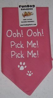 Created dog and cat Bandanas as a service project for my students' Valentine's Day project. Awesome parents to help with the idea and party! 2/10
