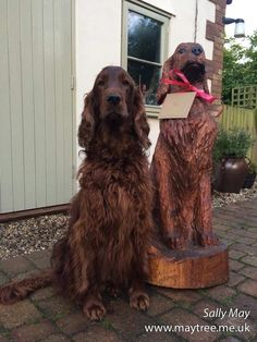MayTree - Chainsaw carvings and sculpture by Sally May. Irish Setter portrait commission, carved from Wellingtonia.