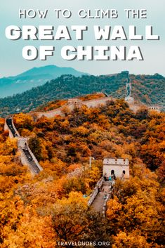 A complete guide to climbing the Great Wall of China. Learn about the history of the wall with its many fun facts or find out which outfits are the best to wear and pack for the adventure. Travel to the best sections of the wall that are less crowded, perfect for extended walks and offer the best photography opportunities. Bucket list travel in China. | Travel Dudes Travel Community #GreatWall #China #BucketList #Travel #Asia #UNESCO #WorldWonder