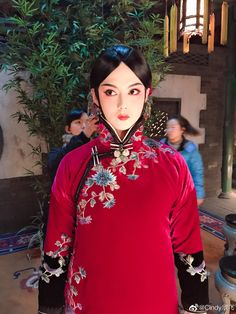 Chinese Opera, Begonia, China Fashion, Pretty Boys, Sari, Costumes, Winter, People, Collection