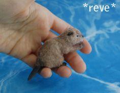 OOAK Realistic Miniature ~ Beaver (Castor) ~ Handmade Dollhouse 1:12 Sculpture $300.00