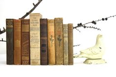 Brown, Tan and Gold Book Collection - Fall Decorating - Fall Vintage Antique 9 Book Collection. $44.50, via Etsy.