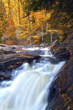 ✮ Stubbs Falls, Arrowhead Provincial Park, south of Algonquin Park, Ontario Beautiful Waterfalls, Beautiful Landscapes, Ontario Provincial Parks, Beautiful World, Beautiful Places, Places To Travel, Places To Visit, Ontario Parks, Algonquin Park