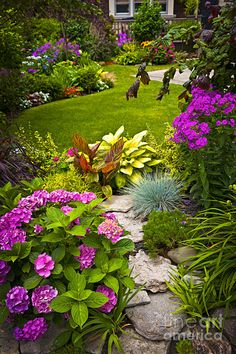 Flower Garden Photograph  - Flower Garden Fine Art Print. Would Love My Backyard To Look Like This! Container Gardening, Gardening Tips, Begonia, Planters, Planter Boxes, Landscaping Ideas, Grass, Creative, Landscape Design