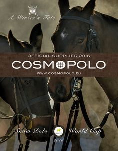 #snowpolokitzbuehel #officialsupplier #cosmopolo #fashion #design #berlin Winter's Tale, World Cup, Berlin, Polo, Fashion Design, Polos, World Cup Fixtures, World Championship, Polo Shirt