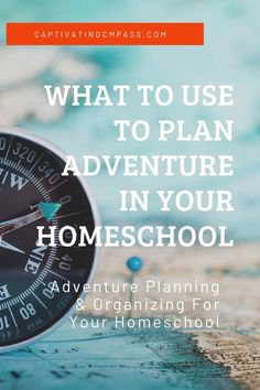 My homeschool mompreneur life is one of making time to plan adventure. I jump from homeschool tasks to website tasks to household jobs and chauffeuring duties at lightspeed some days. Travel With Kids, Family Travel, Homeschool Curriculum, Homeschooling Statistics, Catholic Homeschooling, Homeschooling Resources, History For Kids, What To Use, Young Adults