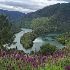 Ruta de A Cubela. En donde el Río Sil hace un gran meandro y uno de los lugares más hermosos de la #RibeiraSacra #lugo #galicia vía @chitinhas #SienteGalicia    ➡ Descubre más en http://www.sientegalicia.com/