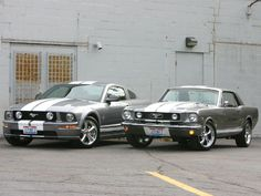ford mustang brand history httpcarswithmusclescomall the