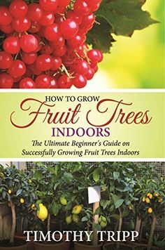 How to Grow Fruit Trees Indoors: The Ultimate Beginner's Guide on Successfully Growing Fruit Trees Indoors by Timothy Tripp, http://www.amazon.com/dp/B00R3WRHY0/ref=cm_sw_r_pi_dp_mOVKub1YTKQKV
