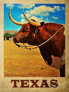 Vintage Travel Poster - Texas - by Flo Karp. Road Trip Usa, Vintage Travel Posters, Vintage Postcards, Vintage Cards, Vintage Signs, Texas History, Texas Travel, Usa Travel, Texans