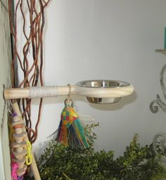 Bird Perch with bowl,Bird Toys, no mess feeder dish for parrots or sugar gliders, great addition to Parrot Perch, Parrot Bird, Bird Perch, Budgies, Parrots, Cockatiel, Parrot Toys, Conure, Bird Toys