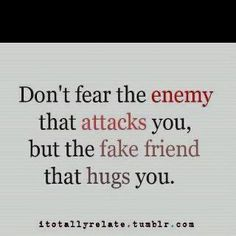 Words to live by.  'Don't fear the enemy that attacks you, but the fake friend that hugs you.'