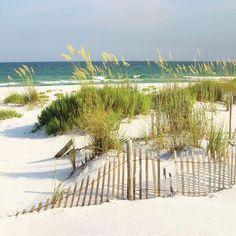 Beach Wall Art, Square Canvas, Canvas Wall Art, Canvas Prints, Floating Frame, State Art, Beach Condo, Glass Wall Art, Beautiful Beaches