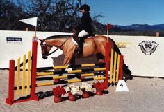 How to build beautiful model horse jumps!
