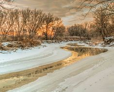 Morning Light on the Riverbank by Garvin Hunter Beautiful Landscape Pictures, Beautiful Landscapes, Morning Light, Fine Art America, Country Roads, Wall Art, Lighting, Artwork, Prints