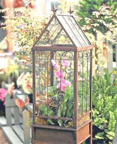 in glass: Tovah Martin's terrariums Wardian Case was spotted in the daily telegraph! Wardian Case was spotted in the daily telegraph! Orchid Terrarium, Terrarium Plants, Glass Terrarium, Terrarium Centerpiece, Homemade Greenhouse, Cheap Greenhouse, Greenhouse Ideas, Pallet Greenhouse, Window Greenhouse