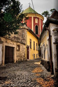 Szentendre Cool Places To Visit, Places To Travel, Budapest Travel Guide, Budapest Things To Do In, Hungary Travel, Heart Of Europe, Austro Hungarian, Budapest Hungary, City Streets