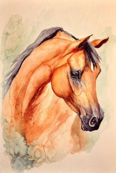 Watercolor Painting of an Arabian