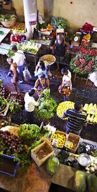 Africa - Top things to do in Mauritius - Lonely Planet