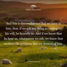 Bible Promises | Shared verse | 1 John 5:14-15