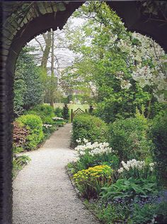 The Garden at Highgrove - The view from the Azalea Walk towards the Wild Flower Meadow and the Sundial Garden The spring planting in front of the serpentine hedge includes clumps of daffodils and tulips.