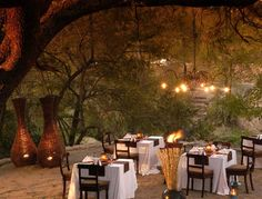 Little Bush Camp : Delicious dinners eaten outside under gently lit trees are a wonderful experience loved by all. This jewel of the South African bushveld boasts all of the features associated with an exceptional safari lodge - beautiful setting, excellent cuisine and abundant wildlife.