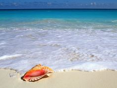 Most Beautiful Beaches in Mexico | Miles de fondos en todas las resoluciones.