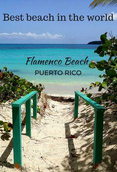 The best beach and campsite in the Caribbean. Culebra island, Puerto Rico