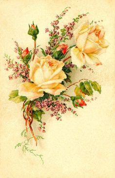 Decoupage Vintage, Art Vintage, Vintage Cards, Vintage Postcards, Vintage Images, Vintage Prints, Art Floral, Floral Prints, Flower Images