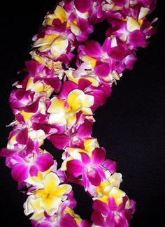 "Photo of Hi'iaka Florist - ""Double Fushia Orchid lei w/plumeria(hot item for 2010 Graduations)"" - San Francisco, CA Orchid Lei, Plumeria Flowers, Aloha Hawaii, Tropical Garden, Hibiscus, Flower Power, Beautiful Flowers, Orchids, Hawaiian Leis"